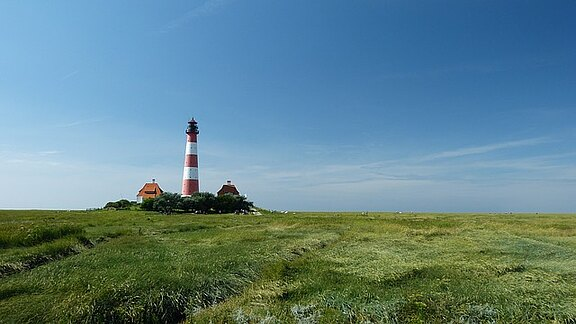 lighthouse-584913_640.jpg